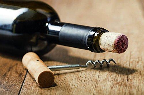 CASO WineMaster 24 Design Weinkühlschrank - 9